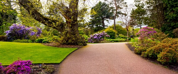 Visitors to Edinburgh can explore the cities magnificent Royal Botanical Gardens also featured in the Scottish Rhododendron Festival.