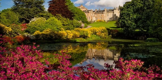 If stunning garden are one of your interests then Luxury Scotland holds some horticultural surprises